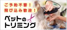 犬・猫トリミング